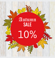 autumn sale discount design with colorful leaves vector image vector image