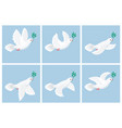 flying white dove olive animation sprite sheet vector image vector image