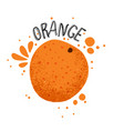 hand draw orange slice vector image vector image