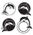 Set vintage dolphin icons emblems and labels