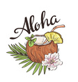 Tropic coconut cocktail Hand drawn Aloha vector image