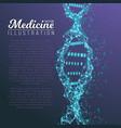 dna spiral medical molecule structure vector image