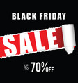 black friday icon sale vector image vector image
