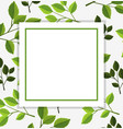 border template with green leaves in background vector image