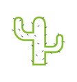 cactus plant graphic design template isolated vector image vector image