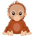 cartoon baby orangutan sitting vector image