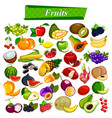 fresh and nutritious fruit set including apple vector image vector image