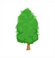Green Oak Tree Woods Natural Landscape Design vector image vector image