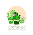 hand drawn of cactus for shop vector image vector image