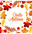 hello autumn leaf template vector image vector image