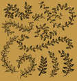 leaves set leaf outline drawing in vintage style vector image