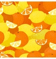 Lemons and Oranges Seamless Pattern vector image vector image