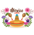 mexican culture hat and maracas vector image vector image