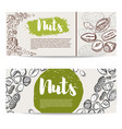 nuts flyer template with border from nuts design vector image