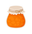 pumpkin jam jar homemade sweet jelly dessert vector image vector image