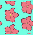 seamless floral pattern with pink saintpaulia vector image vector image