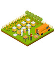 beekeeping apiary farm isometric concept isometric vector image vector image