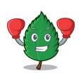 boxing mint leaves character cartoon vector image vector image