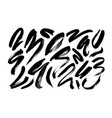 curved brush stroke collection vector image
