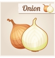 Detailed Icon Onion vector image