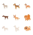 Doggy icons set cartoon style vector image vector image