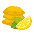 dried lemon with sugar snack or dessert isolated vector image