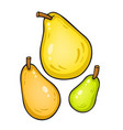 isolated on white pears vector image vector image