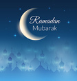 Night landscape wallpaper with mosques vector image vector image