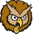 Owl head logo mascot