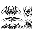 spider tattoos vector image