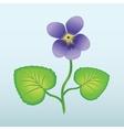 Spring flower Viola violet Floral icon Violet vector image