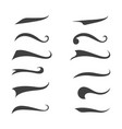 swash and swooshes tails design vector image vector image
