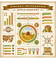 Vintage apple harvest infographic set vector image vector image