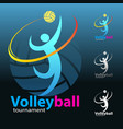 volleyball symbol vector image