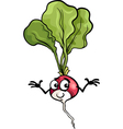 cute radish vegetable cartoon vector image vector image
