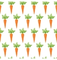 Fresh carrot vector image vector image