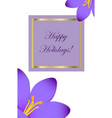 happy holidays congratulation postcard with crocus vector image