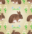 Seamless texture rabbit and spring flowers vector image vector image