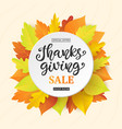 thanksgiving day sale banner template vector image vector image
