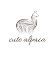 Abstract icon of alpaca vector image