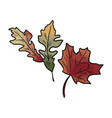 autumn fallen colorful leaves vector image