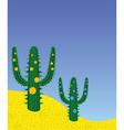 Desert cactus vector image
