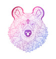 hand drawn neon bear vector image