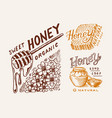 honey and honeycombs bee labels vintage logo for vector image