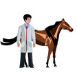 horse with vet doctor on white background vector image vector image