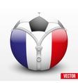 soccer ball inside France symbol vector image vector image