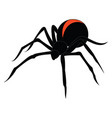 black spider on white background vector image