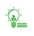 ecology organic green light energy sign on a vector image