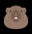 groundhog day concept national holiday in the usa vector image vector image