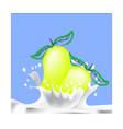 mango and milk splash logo isolated on blue vector image